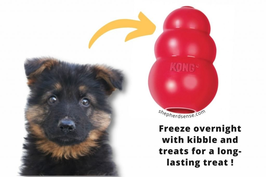 offer them a frozen kong so your german shepherd doesn't bite and nip you