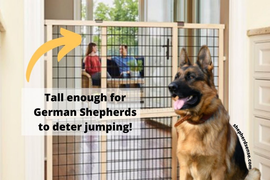 tall pet safe gate to deter german shepherds from jumping and biting
