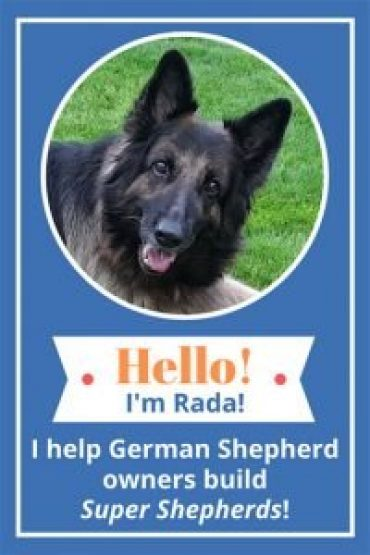 Rada The German Shepherd - Shepherd Sense mascot