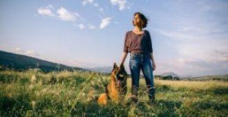 How to Make a German Shepherd Love You (21 Heartwarming Tips)